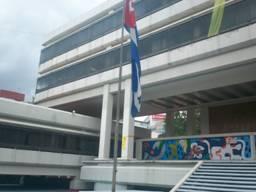 Fotos EmbaCuba Mexico - Listones Amarillos Solidaridad (2)