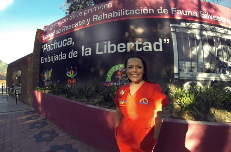 Erika Ortigoza, titular de la Unidad de Rescate, Rehabilitación y Reubicación de Fauna Silvestre, Endémica y Exótica de México, con sede en Pachuca. Foto: Alberto Buitre