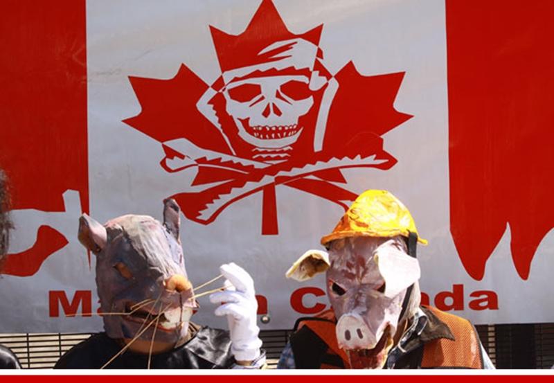 mineras canadienses